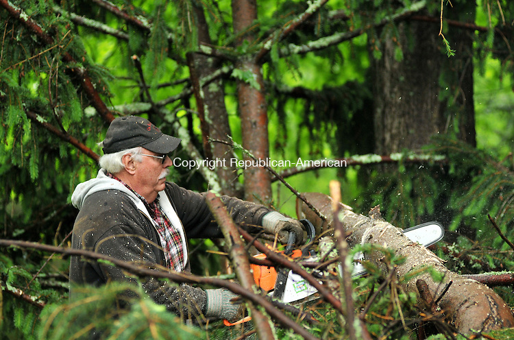 TORRINGTON, CT - 28 MAY 2014 -- Bud Hodge of Roxbury cuts a downed pine tree off Baker Road in Roxbury Wednesday morning. Trees in the area were uprooted and blown down in a fierce thunderstorm Tuesday evening. Alec Johnson/ Republican-American