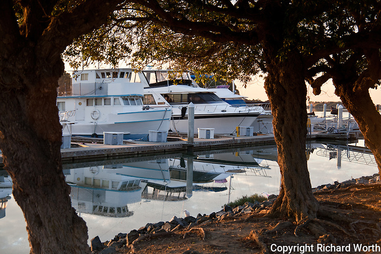 Tied up at the San Leandro Marina, yachts and their early morning reflections.  San Leandro, California.