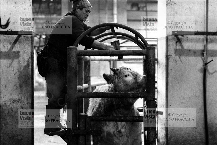 - macello comunale di Milano (1982)..- town butchery of Milan (1982)