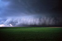 A hailstorm approaches a field of green wheat in eastern Colorado in June.