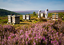 08/08/18<br />