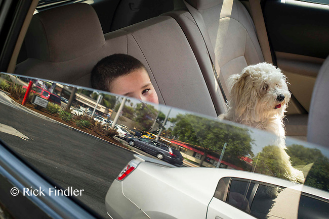Autism for Joe<br /> Joe looks out of the car window with his dog Whitey whilst waiting for his mother to return to the car. Studies have shown that animals can help lower anxiety and social stress for sufferers of Autism.