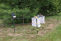 Beekeeping protecting beehives from bears and animals behind electric fencing, Langsthroth bee hive