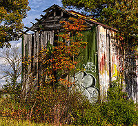 Back side of Race and Mutt Barn in Cameron, NC
