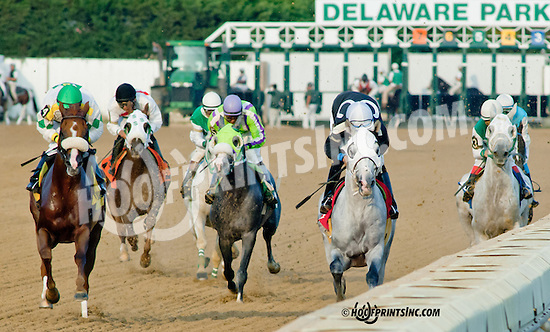 Grilla winning The Delaware Park Arabian Classic Handicap (gr 1) at Delaware Park on 10/5/13
