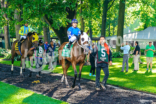 A Place To Shine before The Delaware Oaks (gr 3) at Delaware Park on 7/9/16
