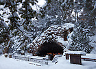Grotto in Winter..Photo by Matt Cashore/University of Notre Dame