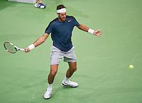 14-02-13, Tennis, Rotterdam, ABNAMROWTT, Grigor Dimitrov - Juan Martin Del Porto