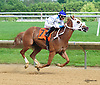 Bill's Passion winning at Delaware Park on 6/6/16