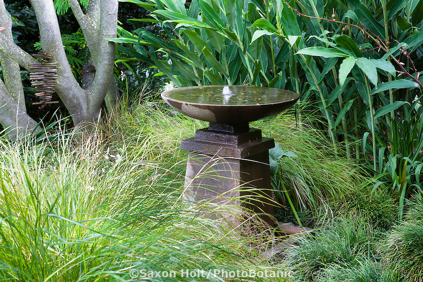 Birdbath, bubbling fountain among grasses Stipa arundinacea and mondo grass in California garden