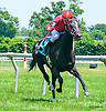 The Real Lefty winning at Delaware Park on 76/28/17
