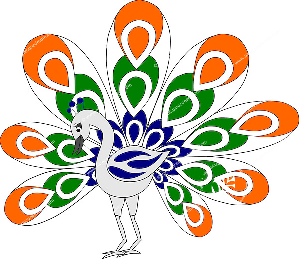 Stock vector: Graceful peacock spreading its feathers with Indian flag colors.<br /> <br /> Suitable for projects related to Indian Republic Day (26th January), Indian Independence Day (15th August) or other Indian patriotic themes.<br /> <br /> This image is also available as Illustrator EPS 10 &amp; PNG (Transparent background) formats.