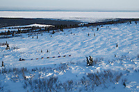Sebastian Schnuelle on the trail in the hills between Elim and Golovin on Tuesday evening with the Bering Sea in the background   Iditarod 2009
