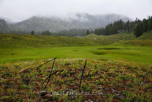 Yellowstone photo