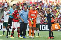 RIO DE JANEIRO, 04.05.2014 - Fernando Prass do Palmeiras sai lesionado durante o primeiro tempo do jogo contra Flamengo pela terceira rodada do Campeonato Brasileiro disputado neste domingo no Maracanã. (Foto: Néstor J. Beremblum / Brazil Photo Press)