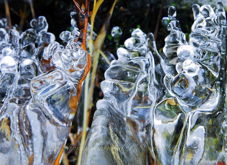"""ICE PUPPETS-2""<br />
