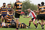 Referee John Wright rules that the ball was held up over the line after the Patumahoe forwards had shunted their way over. Premier Counties Power Club Rugby Round 3, Counties Power Game of the Week, between Patumahoe and Bombay, played at Patumahoe on Saturday March 24th 2018. <br /> Photo by Richard Spranger.<br /> <br /> Patumahoe Counties Power Cup Holders won the game 26 - 23 after trailing 7 - 23 at halftime.<br /> Patumahoe 26 - Penalty try, Richard Taupaki, Theodore Solipo, Craig Jones tries; Riley Hohepa 2 conversions. <br /> Bombay 23 - Shaun Muir, Jordan Goldsmith, Liam Daniela, tries; Tim Cossens conversion; Tim Cossens 2 penalties.