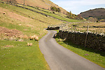 Narrow road and dry stonewall, Boredale valley, Martindale, Lake District national park, Cumbria, England, UK