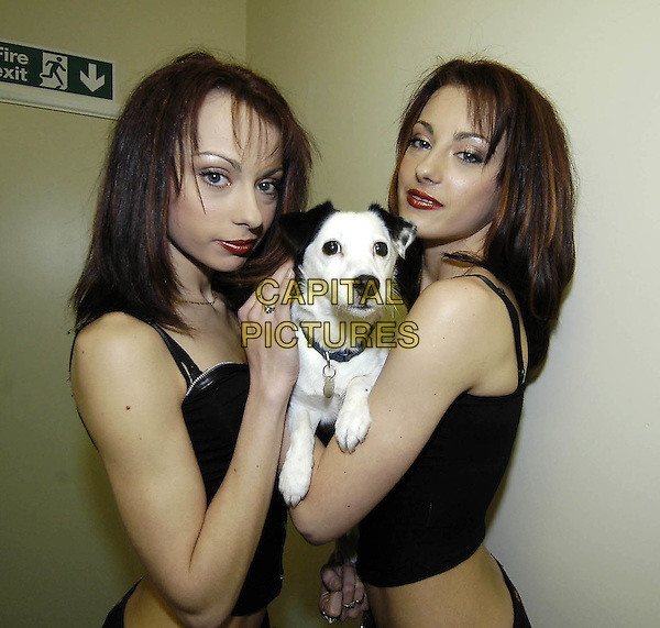 THE CHEEKY GIRLS.Gabriela & Monica Irimia.open new HMV in Scunthorpe.21/11/2003.twins, dog, animal.www.capitalpictures.com.sales@capitalpictures.com.©Capital Pictures