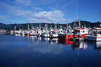 A seaside coastal marina on the Pacific Ocean. Oregon.