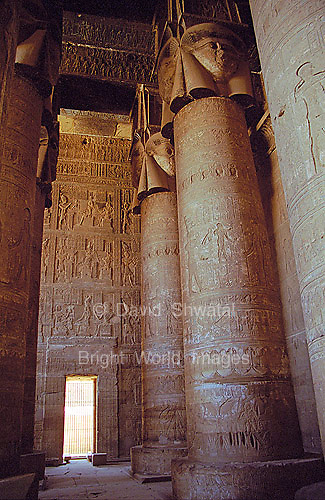 Columns and hieroglyphs under the ceiling of  Dendera Temple