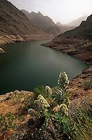 Spanien, Kanarische Inseln, Gran Canaria, Embalse de Paralillo