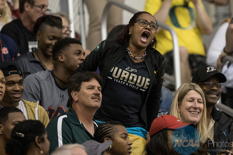 COLLEGE STATION, TX - MARCH 11: A Purdue fan cheers during the Division I Men's and Women's Indoor Track & Field Championship held at the Gilliam Indoor Track Stadium on the Texas A&M University campus on March 11, 2017 in College Station, Texas. (Photo by Michael Starghill/NCAA Photos/NCAA Photos via Getty Images)