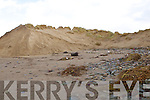Pictured on Ballyheigue beach at the erosion of the sand dunes on Sunday