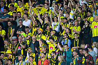 Phoenix fans celebrate during the A-League football match between Wellington Phoenix and Brisbane Roar at Westpac Stadium in Wellington, New Zealand on Saturday, 23 November 2019. Photo: Dave Lintott / lintottphoto.co.nz