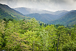 Rain showers in the mountains surrounding Cades Cove, Great Smoky Mountains National Park, TN, USA