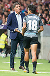 Malaga's coach Jose Miguel Gonzalez 'Michel' and Roberto Jose Rosales during La Liga match between Atletico de Madrid and Malaga CF at Wanda Metropolitano in Madrid, Spain September 16, 2017. (ALTERPHOTOS/Borja B.Hojas)