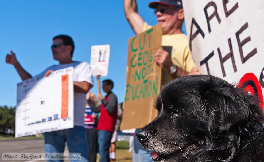 Mischa (and Rik's sign) with Rick (left) and Chuck (right) at the Occupy Orange County, Irvine camp on Saturday November 5.