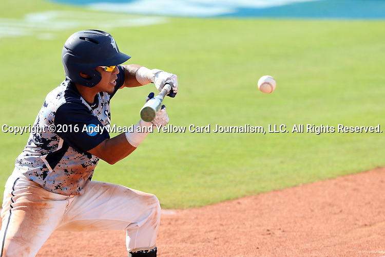 02 June 2016: Nova Southeastern's Jancarlos Cintron-Torres bunts the ball. The Nova Southeastern University Sharks played the Cal Poly Pomona Broncos in Game 11 of the 2016 NCAA Division II College World Series  at Coleman Field at the USA Baseball National Training Complex in Cary, North Carolina. Nova Southeastern won the semifinal game 4-1 and advanced to the championship series.