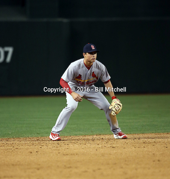 Aledmys Diaz - 2016 St. Louis Cardinals (Bill Mitchell)