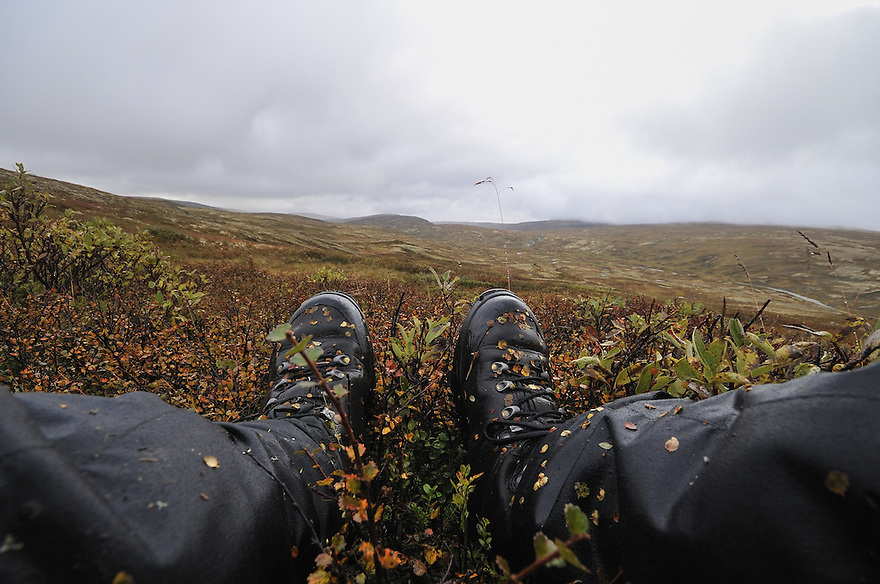 Resting in the mountain,Forollhogna,Norway