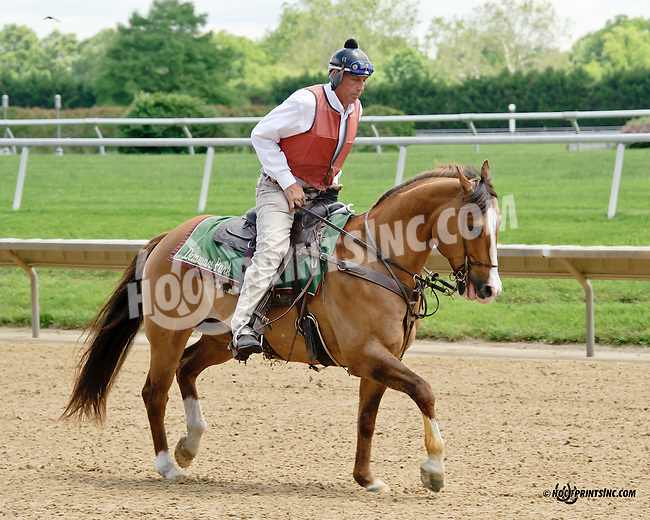 Lance at Delaware Park racetrack on 6/5/14