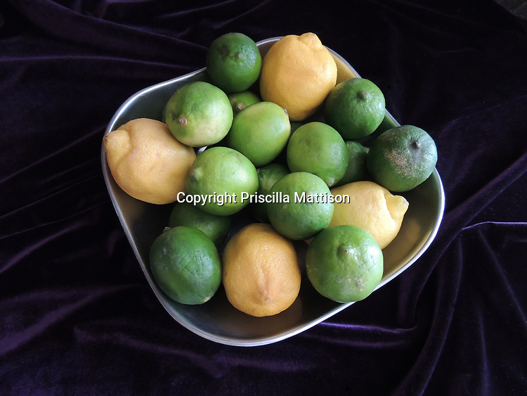 Contemporary still life of lemons and limes in a silver colored bowl against a purple backdrop