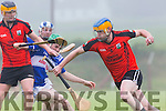 In Action Ballyheigue's Mark Dineen in the Garvey's Super Valu Senior County Hurling Championship Round 2B Ballyheigue V St Brendan's in Causeway on Sunday