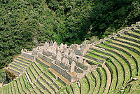 Built into a steep hillside overlooking the Urubamba River, Wiñay Wayna consists of an upper ceremonial section, and a lower living section, flanked by a sweeping amphitheater of agricultural terraces. This neighbor to Machu Picchu is an unexpected treasure for trekkers on the Inca Trail.