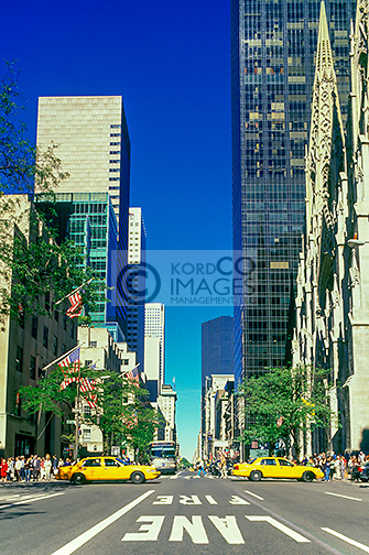 FIFTH AVENUE MIDTOWN MANHATTAN NEW YORK CITY USA