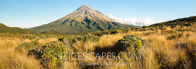 Alpine vegetation and Taranaki, Mt. Egmont, Egmont National Park, North Island, New Zealand, NZ