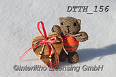Helga, CHRISTMAS ANIMALS, WEIHNACHTEN TIERE, NAVIDAD ANIMALES, photos+++++,DTTH156,#xa#