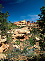 Art in Nature 9705-0111 - The Needles rock formation as seen from Chesler Park in the Needles District of Canyonlands National Park. Utah.