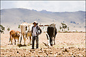 -Octobre 2007- Bolivie- Cordillère des Andes- Sur la route des mines de Potosi- hauts plateaux.