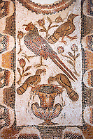Christian funerary Mosaic depicting the fountain of life which was a early Christian ssymbol of Christian faith. This early Christian mosaic is from Basilica of Furnos Minus, 5th century AD. Roman mosaics from the north African Roman province of Africanus . Bardo Museum, Tunis, Tunisia.