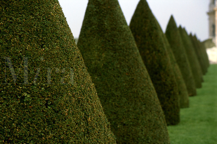 Garden design detail at Versailles, France