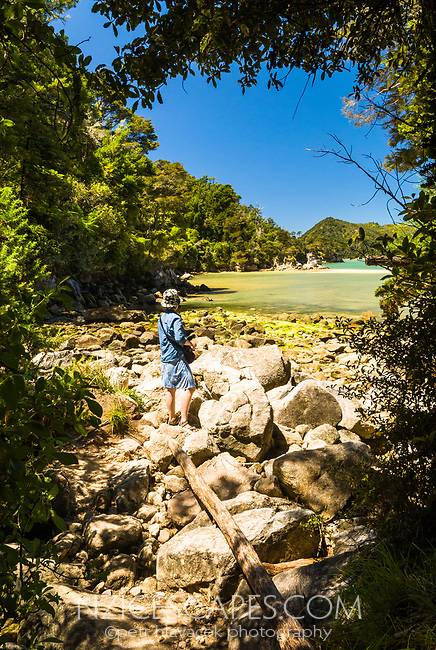Hiker enters Stilwell Bay on Abel Tasman Coastal Track, Abel Tasman National Park, Nelson Region, New Zealand, NZ