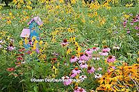 63821-207.03  Birdhouse in garden with Purple Coneflowers (Echinacea purpurea), Gray-headed Coneflowers (Ratibida pinnata), Black-eyed Susans (Rudbeckia hirta) and Red Bee balm (Monarda didyma) Marion Co. IL