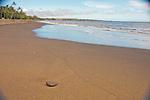 A lone stone on the black sands beach at Waimea, Kauai, Hawaii