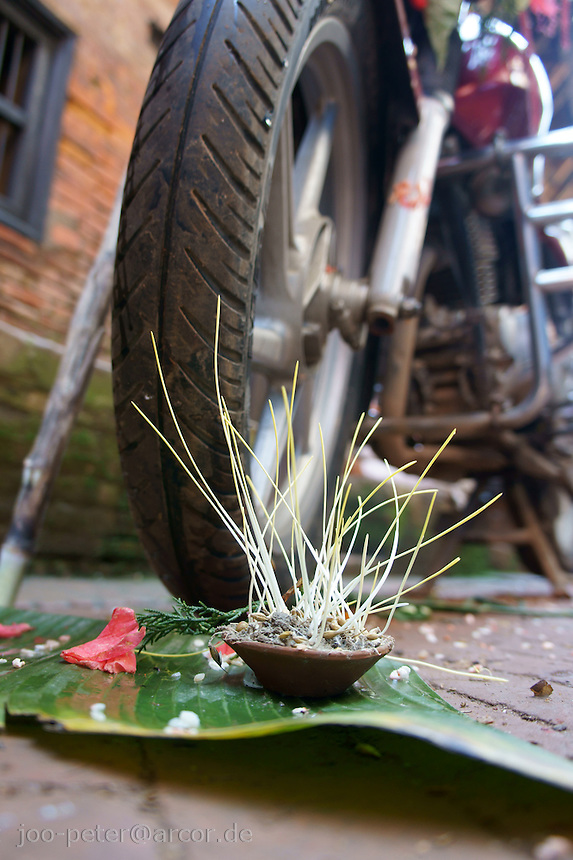offerings for goddess Durga intending  blessings for good luck, prosperity and fertility next to a motor-bike wheel during Dashein festival time in the streets of Newar city Bhaktapur, Nepal.  The first day of dashain, barley seeds are sewn, growing  quickly to be carried at the end of the festival  to the temple as part of the offerings.